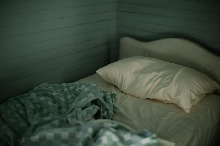 SleepBed_LaraKimmerer